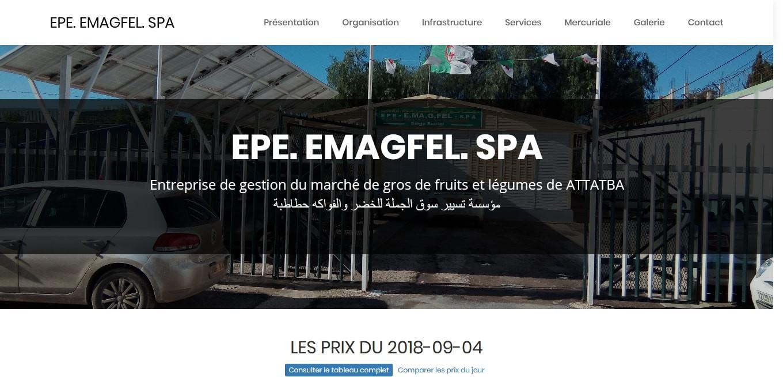 EPE EMAGFEL SPA
